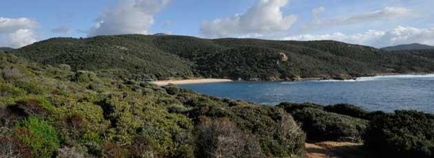 Séminaire incentive en Corse. Ysséo Event (5,