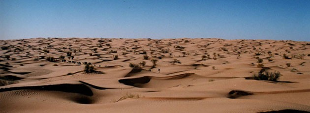 Voyage incentive en Tunisie - Ysséo Event Agence incentive (2,