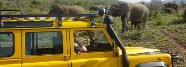 Voyage incentive clients Afrique du Sud - Ysséo Event agence incentive (6,