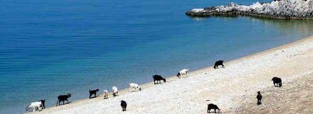 voyage incentive Grèce - Ysséo Event Agence Incentive (9,